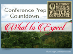 What to Expect   blueridgeconference.com